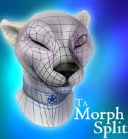 TA_MorphSplit